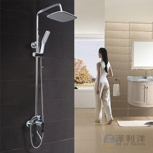 淋浴器zly-203